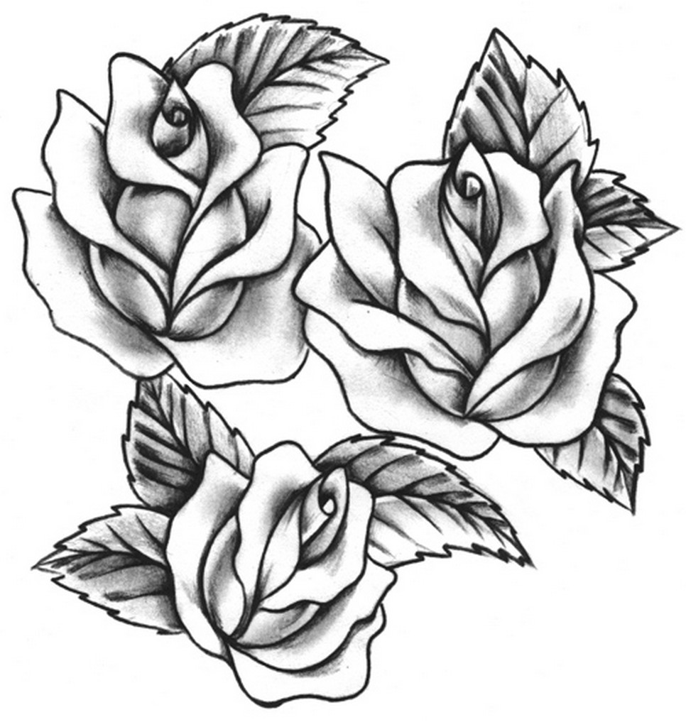 Line Art Rose Tattoo : Rose tattoos designs ideas and meaning for you