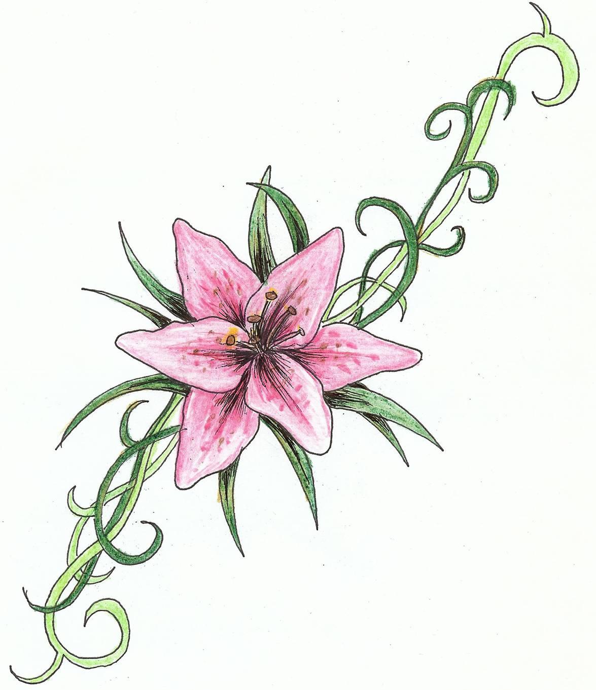 Similiar lily tattoo stencils keywords lily tattoo stencils izmirmasajfo